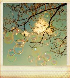 Polaroid_soap_bubbles_by_wonderlandadventures.jpg 695×780 pixels