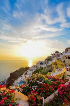 Sunset + Flowers in Oia, Santorini youve got to be kidding me , how can anything be this beautiful?: