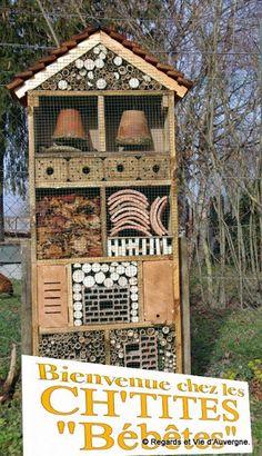 Id e cr ative faire soi m me une maison pour les insectes hotel insecte pinterest - Maison a insectes plan ...