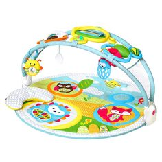 Luxury Play Gym for Baby