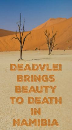 Deadvlei brings Beauty to Death in Namibia Africa. Our experience in Deadvlei is one we will not soon forget. When people ask us about Namibia, we immediately start talking about Deadvlei and the surrounding desert sand dunes. Of the many wonders that Namibia has on offer, Deadvlei is one you should not miss out on. Click to read the full travel blog post.  http://www.divergenttravelers.com/deadvlei-brings-beauty-namibia/