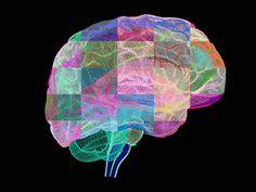 Our Parkinson's Place: Test Of Experimental Alzheimer's Drug Finds Progre...