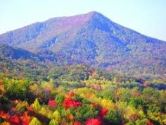 The Smoky Mountains' Best Kept Secret:  We try not to keep a lot of secrets about the Smokies, so we decided to share some information about a favorite place to visit in the area. Step away from the Gatlinburg and Pigeon Forge attractions, and you will see why so many people enjoy spending time in Wears Valley. - Follow the link to read more about Wears Valley!