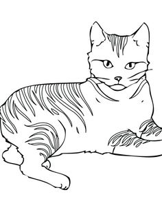 Cat Outline Coloring Page Cat Outline Coloring Page. Cat Outline Coloring Page. Cats Coloring Pages Free Printables In 2020 in cat coloring page Kids Coloring Pages Cats Easy Cute Cat To Print And