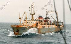 The Zodchy big refrigerator trawler fishing in the Northern Atlantic, 1987