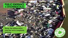HEMP Bio-DeGradable Plastics - End World Pollution 4EVER !!!