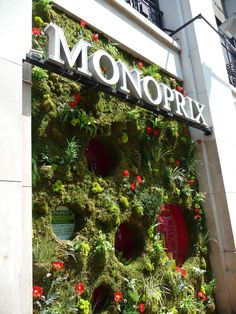 Mur végétal sur la façade du Monoprix de l'avenue des Champs-Élysées (Paris 8e), mai 2010, photo Alain Delavie