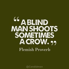 """A blind man shoots sometimes a crow"". #Quotes #Flemish #Proverb via @Candidman"