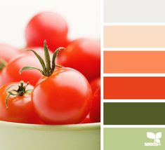 tomato tones  [my favored shades of green, peach and coral. the tomato red COLOR not so favored]