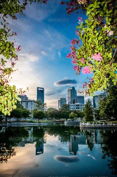 = Another beautiful view of Charlotte, North Carolina