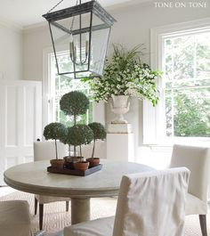 Tone on Tone: myrtle topiaries in our dining room / Benjamin Moore 100% Classic Gray for walls and 50% Classic Gray for trim. Floors are a custom gray and, once again, in gloss