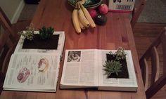 5 originales ideas DIY para decorar con tus plantas   Cuidar de tus plantas es facilisimo.com