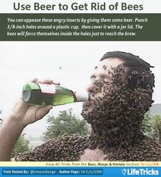 Use Beer to Get Rid of Bees