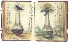 Alchemy Art, Alchemy Symbols, Tarot, Natural Philosophy, Philosophers Stone, Sabbats, The Magicians, The Fool, Magick