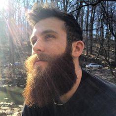 "BEARDS IN THE WORLD on Instagram: ""@epic.beardz #beautifulbeard #beardmodel #beardmovement #baard #bart #barbu #beard #beards #barba #bearded #barbudo #barbeiro #beardviking #beardo #hipster #menhair #fullbeard #barber #barbuto #barbershop #barbearia #boroda #beardlife #beardstyles #goal2try #longbeard4 #seebefch444kb44"""