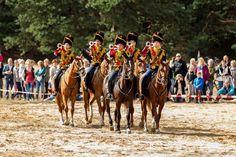 Weekend van het Paard in NP De Hoge Veluwe   Elke dag vakantie