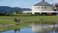 Tie the knot at one of the picturesque vineyards in the Hawke's Bay, New Zealand. New Zealand Country, New Zealand Wine, Wedding New Zealand, Take The Opportunity, Places To Get Married, Once In A Lifetime, British Isles, Getting Married, Island