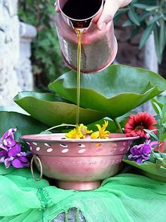 Essential Oils and Ayurveda: Ancient Wisdom for Modern Life Ayurveda is the oldest system of natural medicine that we know. Ayurveda, Ayurvedic Diet, Sri Lanka Reisen, Sacred Garden, Bath Recipes, Self Massage, Massage Oil, Surfer, Spa Treatments