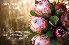 Foto's vir die mooi 31 God Quotes About Life, Love Me Quotes, Life Quotes, Protea Art, Bible Journaling For Beginners, Birthday In Heaven, Afrikaanse Quotes, Goeie Nag, Goeie More