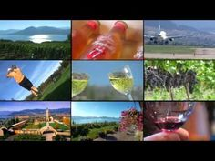 Okanagan Winery Tours, Food / Outdoor / Adventure & Custom Tours: Distinctly Kelowna Tours