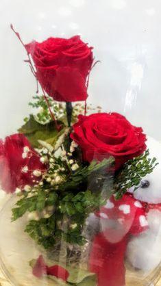 Beauty and the Beast Enchanted Rose in Glass  Preserved roses -forever roses in glass 30cm h  Φυσικά Τριαντάφυλλα που κρατούν για περισσότερο από 2 χρόνια . Σύνθεση από τρία κόκκινα επεξεργασμένα τριαντάφυλλα ,φυλλώματα και αρκουδάκι  μέσα σε γυάλα 30 εκ ύψους.triantafilla gia panta