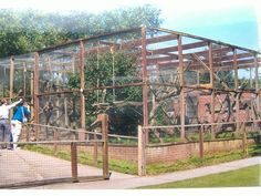 Monkey Cage, Pet Monkey, Zoo Architecture, Bird Aviary, Wild Girl, Exotic, Nikko, Landscape, Pets
