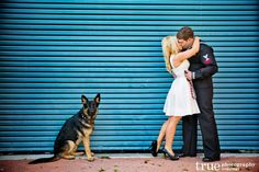 Engagement Photo Shoot with a German Shepherd Puppy   Jaclyn and Austin in San Diego / top local wedding photographers