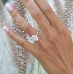 Dream Engagement Rings, Engagement Ring Settings, Coloured Stone Engagement Rings, Most Popular Engagement Rings, Tiffany Engagement, Engagement Bands, Fall Engagement, Engagement Photos, Gold Bands