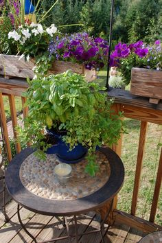 garden table with stones