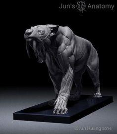Big Cats anatomy models, lion, tiger, saber-tooth - CGFeedback: