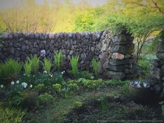 cool Secret Garden Water Bowl  #Landscape #Water    Beautiful place, gardeners eden but also frogs eden !...
