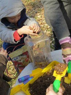 Building a worm farm by Teach Preschool