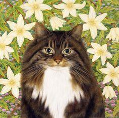 Emma by Anne Mortimer