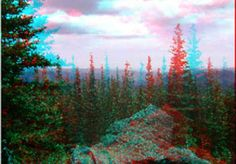 I will create a red/blue 3D image from any of your pictures and send you a digital copy for $10