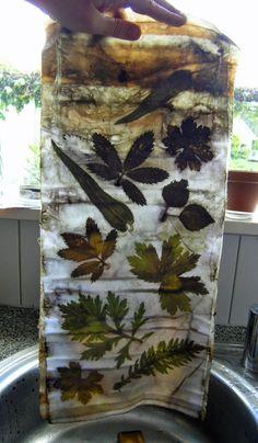: Ecoprint on cotton
