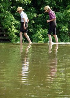 Amish Reflections  Amish boys explore a pond in search of minnows in Lancaster County, PA