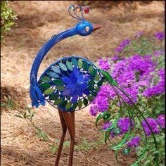 Garden Peacock