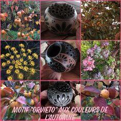 """Out of Umbria: Motif """"orvieto"""" aux couleurs de l'automne Creations, Plants, Inspiration, Pattern, Biblical Inspiration, Plant, Inspirational, Planets, Inhalation"""