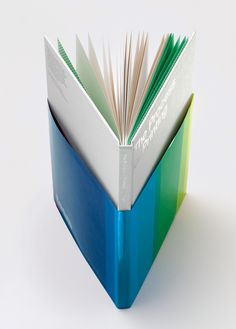 'The Process of Printing' book. Love the half dust jacket!