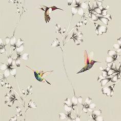 Harlequin Amazilia Wallpaper - Silver