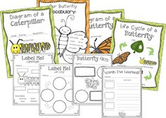 Common Core aligned butterfly unit! Tons of science, literacy, math and writing activities included! Check out the post for a freebie :)