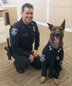 This K-9 Police dog looks awesome in his uniform