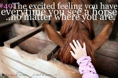 I always get very excited! Never as excited as when I see 'my' horse.. Home is where 'my' horse is