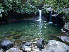 Bassin paradis à capesterre belle eaux . Guadeloupe