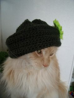 Dress Up Your Pets and Throw on a Hat | Fat-Bottom-Fifties Get Fierce