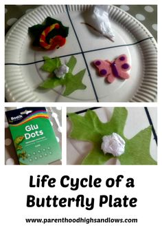 Teach your child about the life cycle of a butterfly with this fun paper plate activity.
