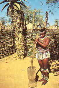Africa dishes | Zulu Culture - Zulu Food, Amazi and Beer
