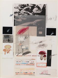 Cy Twombly, Natural History Part I Mushroom, 1974, Lithograph with collage