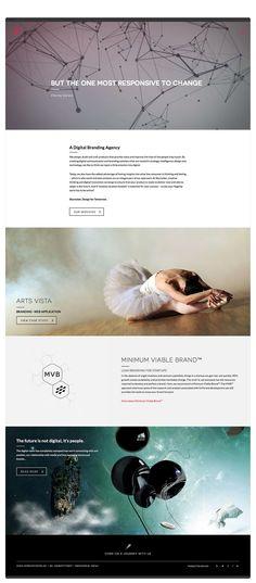 The Skyrocket Brand   Skyrocket Digital #responsive #UX