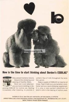 View Item: 1964 Borden's Esbilac Dog Vitamins Poodles in love Cute Vtg Print Ad